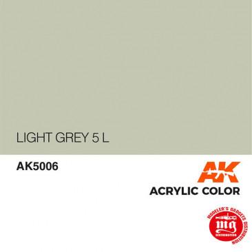 LIGHT GREY 5 L AK5006