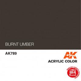 BURNT UMBER AK789