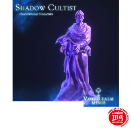 SHADOW CULTIST SUMMONER WITH BASE VOIDREALM MINIS